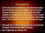 commitaphobia26