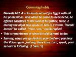 commitaphobia29