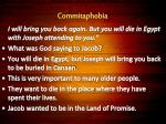 commitaphobia33