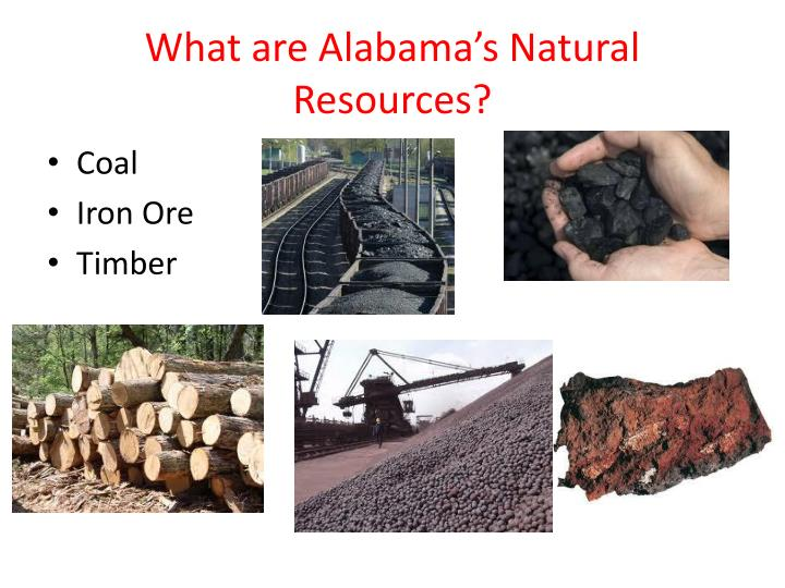 What are Alabama's Natural Resources?