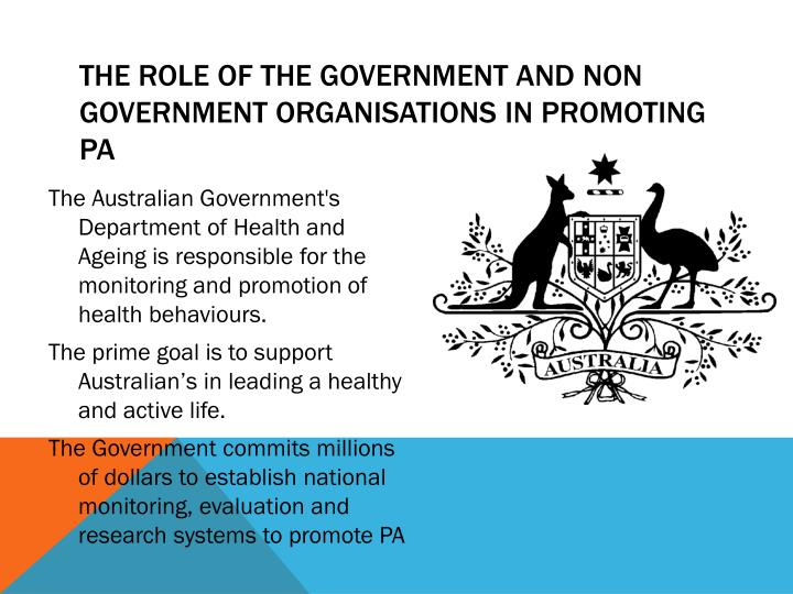 The role of the government and non government organisations in promoting pa