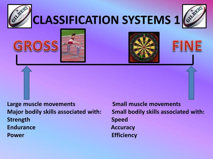 CLASSIFICATION SYSTEMS 1