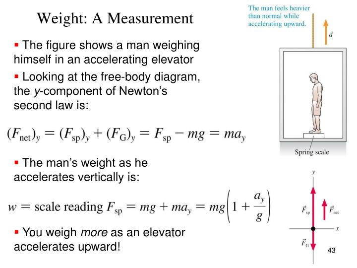 Weight: A Measurement