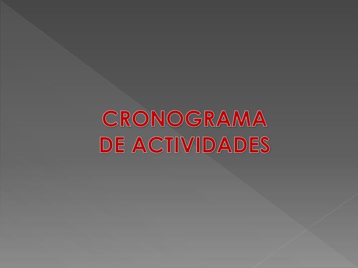 CRONOGRAMA