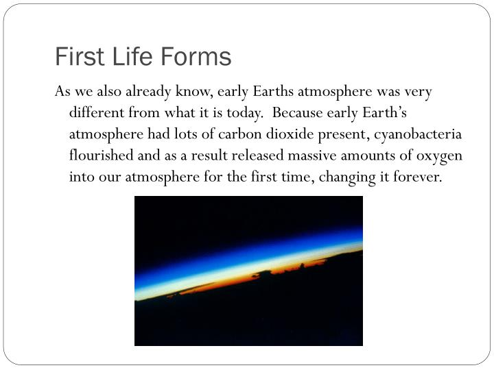 First Life Forms