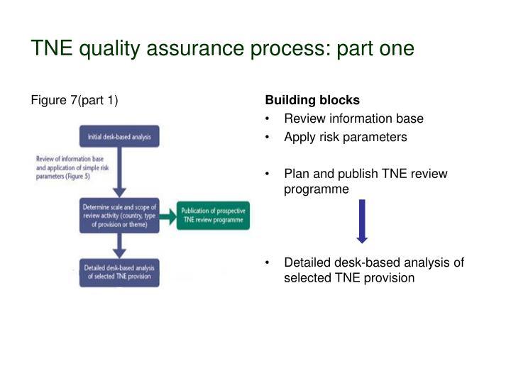 TNE quality assurance process: part one