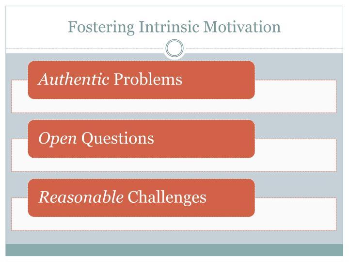 Fostering Intrinsic Motivation