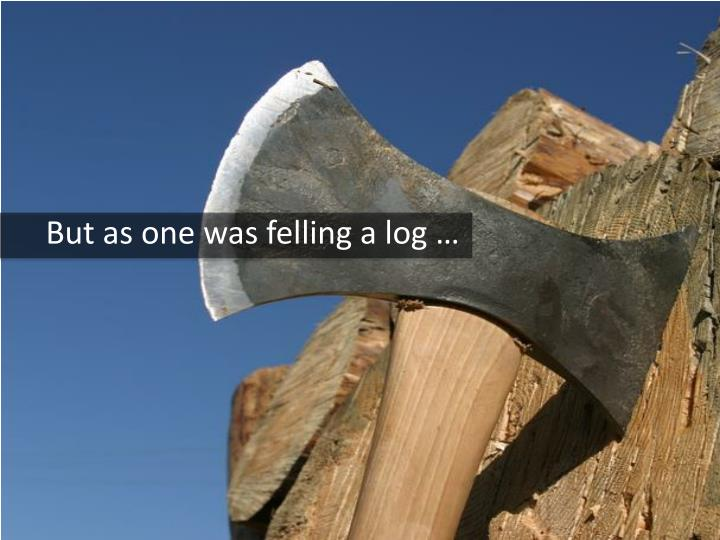 But as one was felling a log …