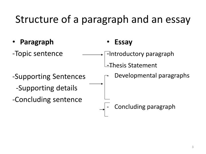 Structure of a paragraph and an essay