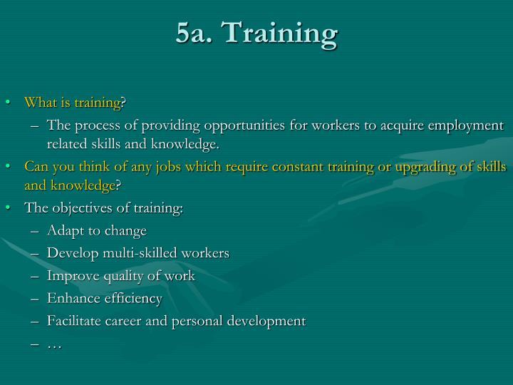 5a. Training
