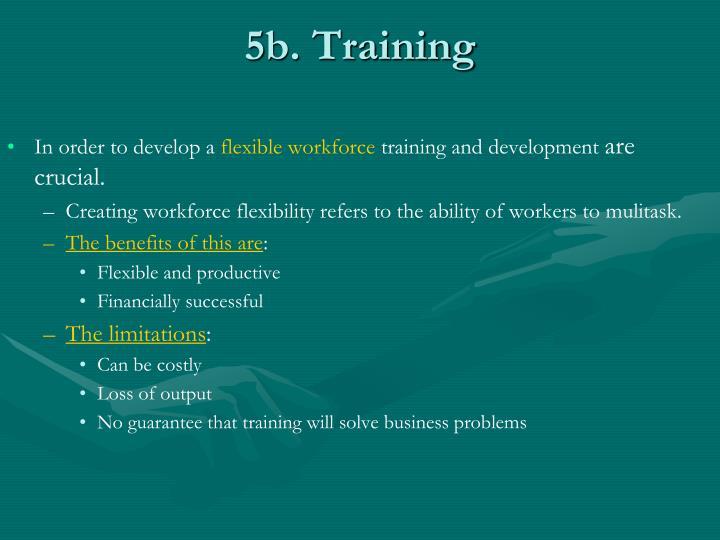 5b. Training