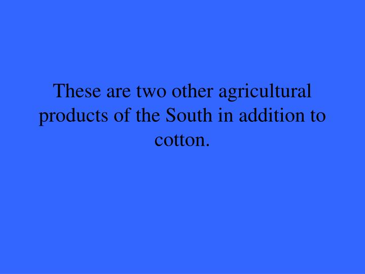 These are two other agricultural products of the South in addition to cotton.