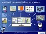 visualizaci n operacional definida por el usuario1