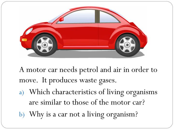 A motor car needs petrol and air in order to move.  It produces waste gases.
