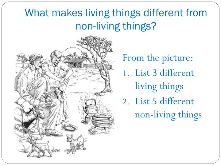 What makes living things different from non living things