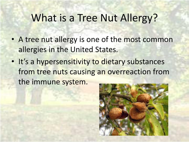 What is a Tree Nut Allergy?
