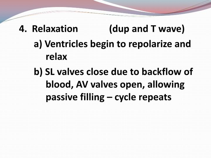 4.  Relaxation             (dup and T wave)