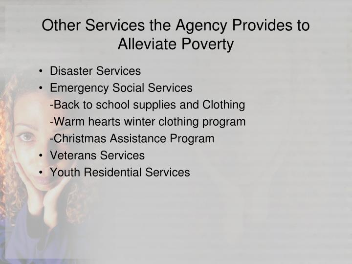 Other Services the Agency Provides to Alleviate Poverty