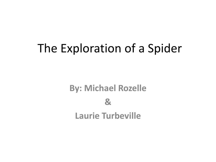 The exploration of a spider