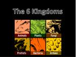 the 6 kingdoms