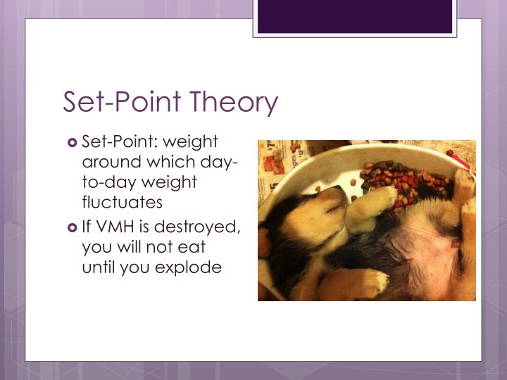 Set-Point Theory