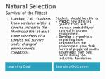 natural selection survival of the fittest