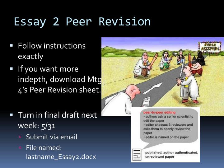 Essay 2 Peer Revision