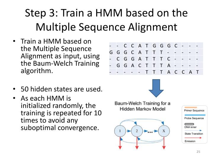 Step 3: Train a HMM based on the Multiple Sequence Alignment