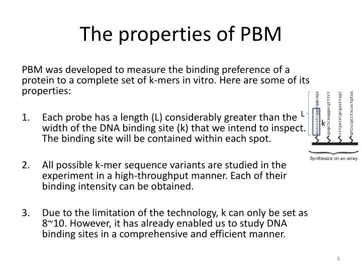 The properties of PBM