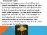the comet moth