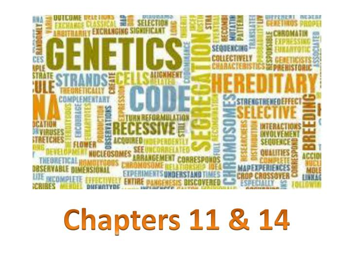 Chapters 11 & 14