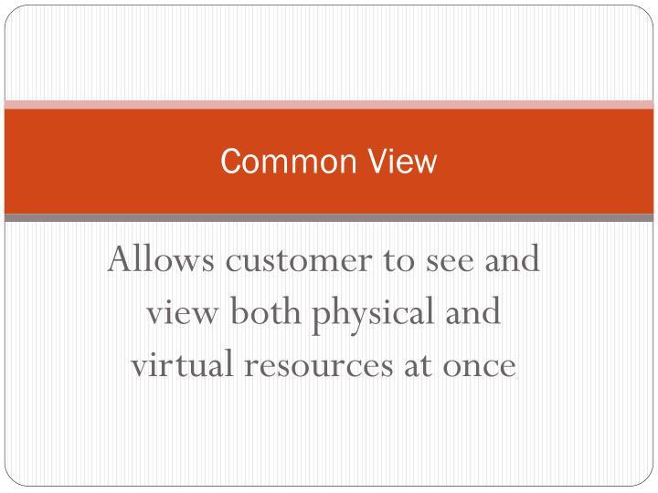 Common View