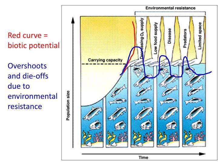 Red curve = biotic potential