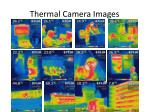 thermal camera images