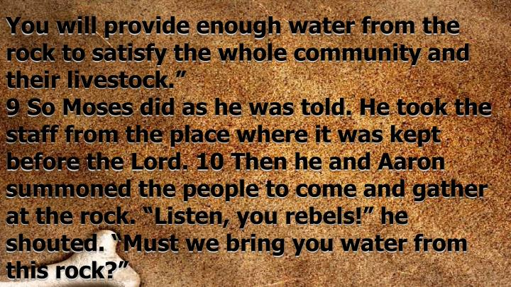 You will provide enough water from the rock to satisfy the whole community and their livestock.""