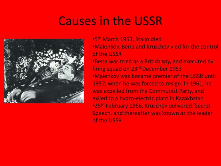 Causes in the USSR