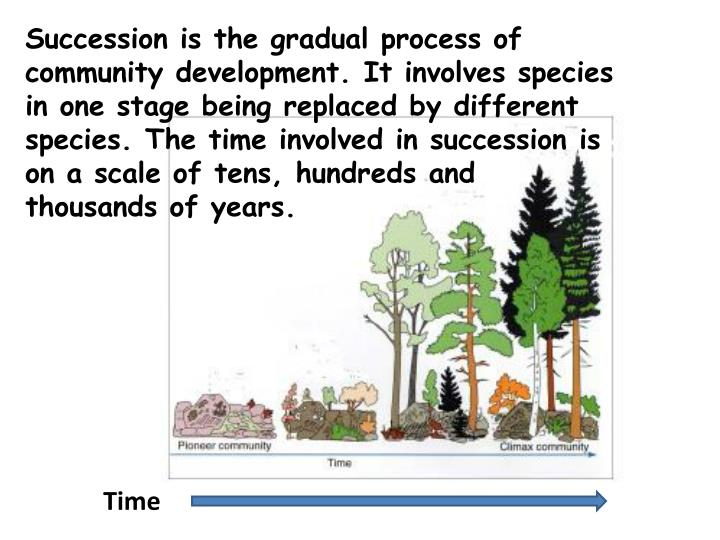 Succession is the gradual process of community development. It involves species in one stage being r...
