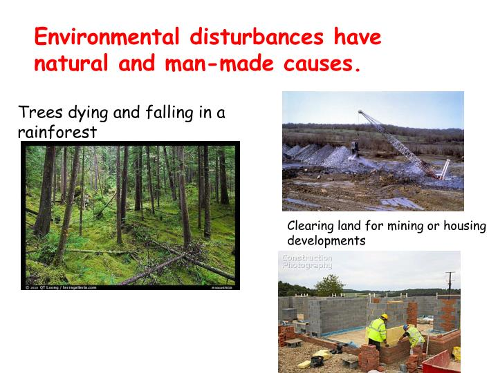 Environmental disturbances have natural and man-made causes.