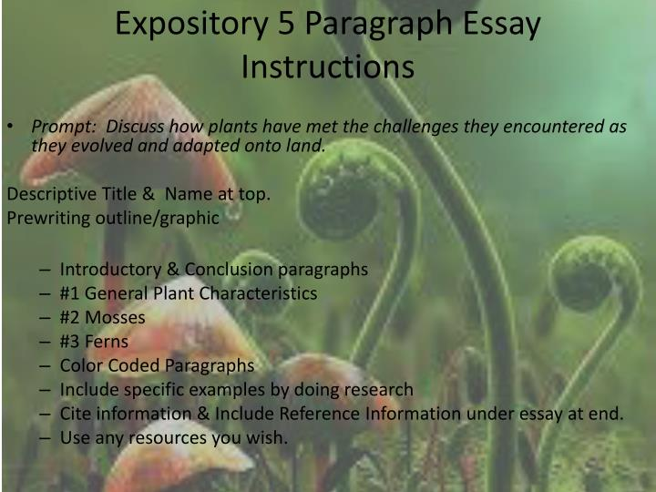 introduction paragraph for expository essay what makes a good introduction paragraph for an expository essay