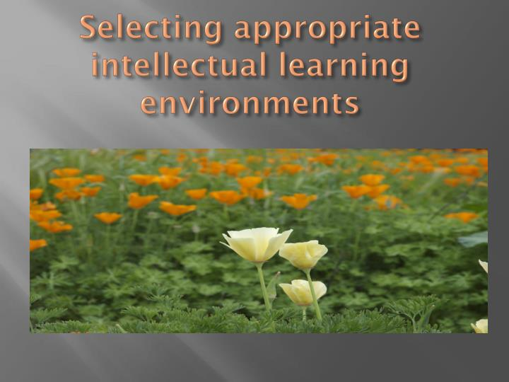 Selecting appropriate intellectual learning environments