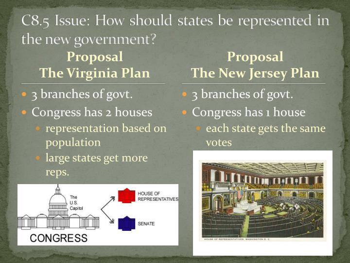 C8.5 Issue: How should states be represented in the new government?