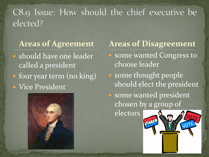 C8.9 Issue: How should the chief executive be elected?