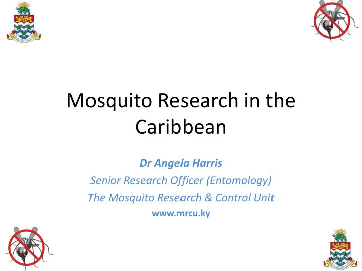 Mosquito research in the caribbean