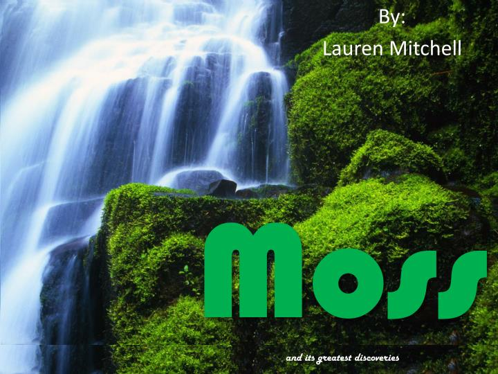Moss and its greatest discoveries