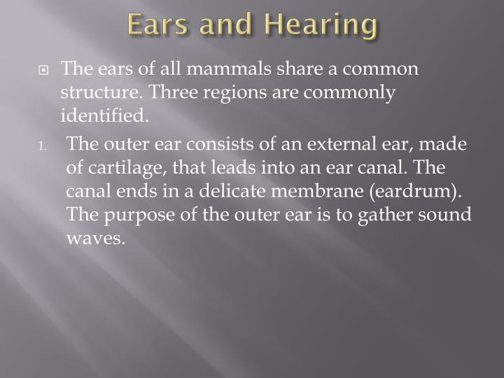 Ears and Hearing