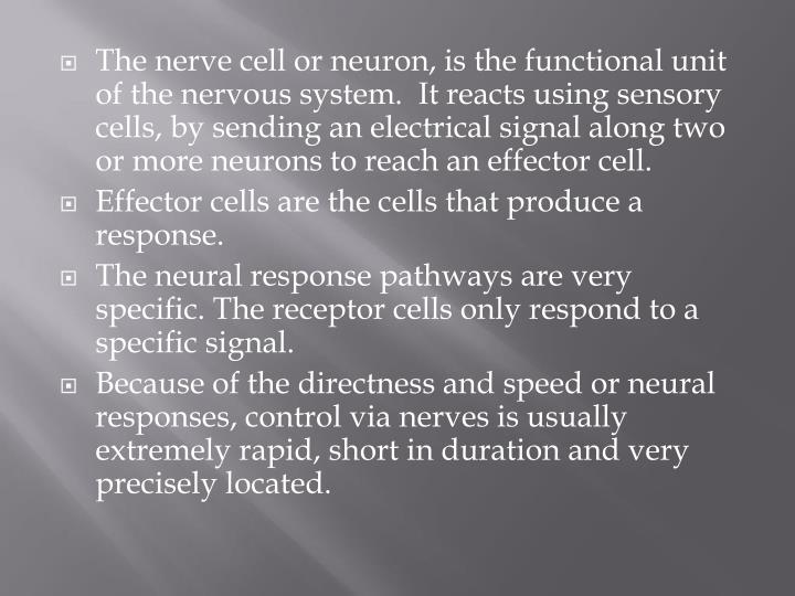 The nerve cell or neuron, is the functional unit of the nervous system.  It reacts using sensory cells, by sending an electrical signal along two or more neurons to reach an