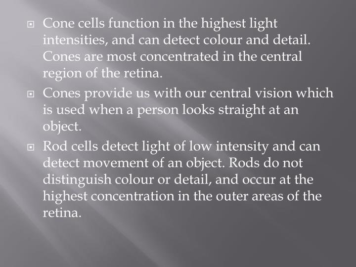 Cone cells function in the highest light intensities, and can detect