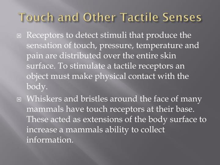 Touch and Other Tactile Senses