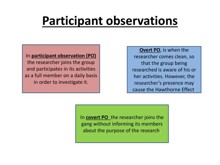 Participant observations
