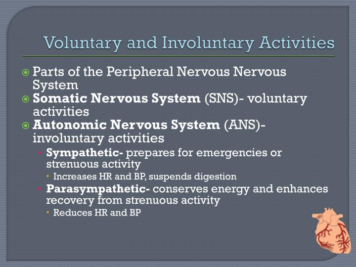 Voluntary and Involuntary Activities